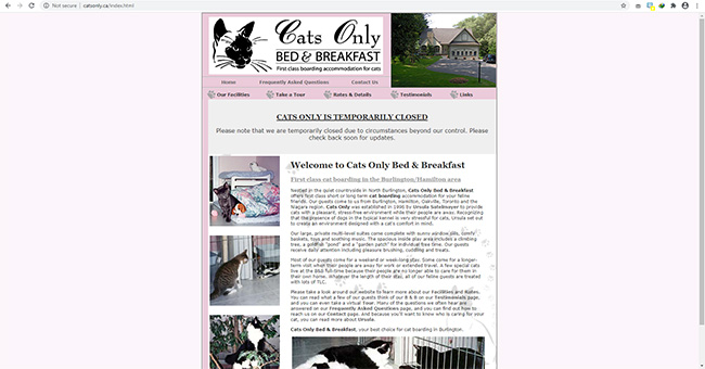 Cats Only Bed & Breakfast